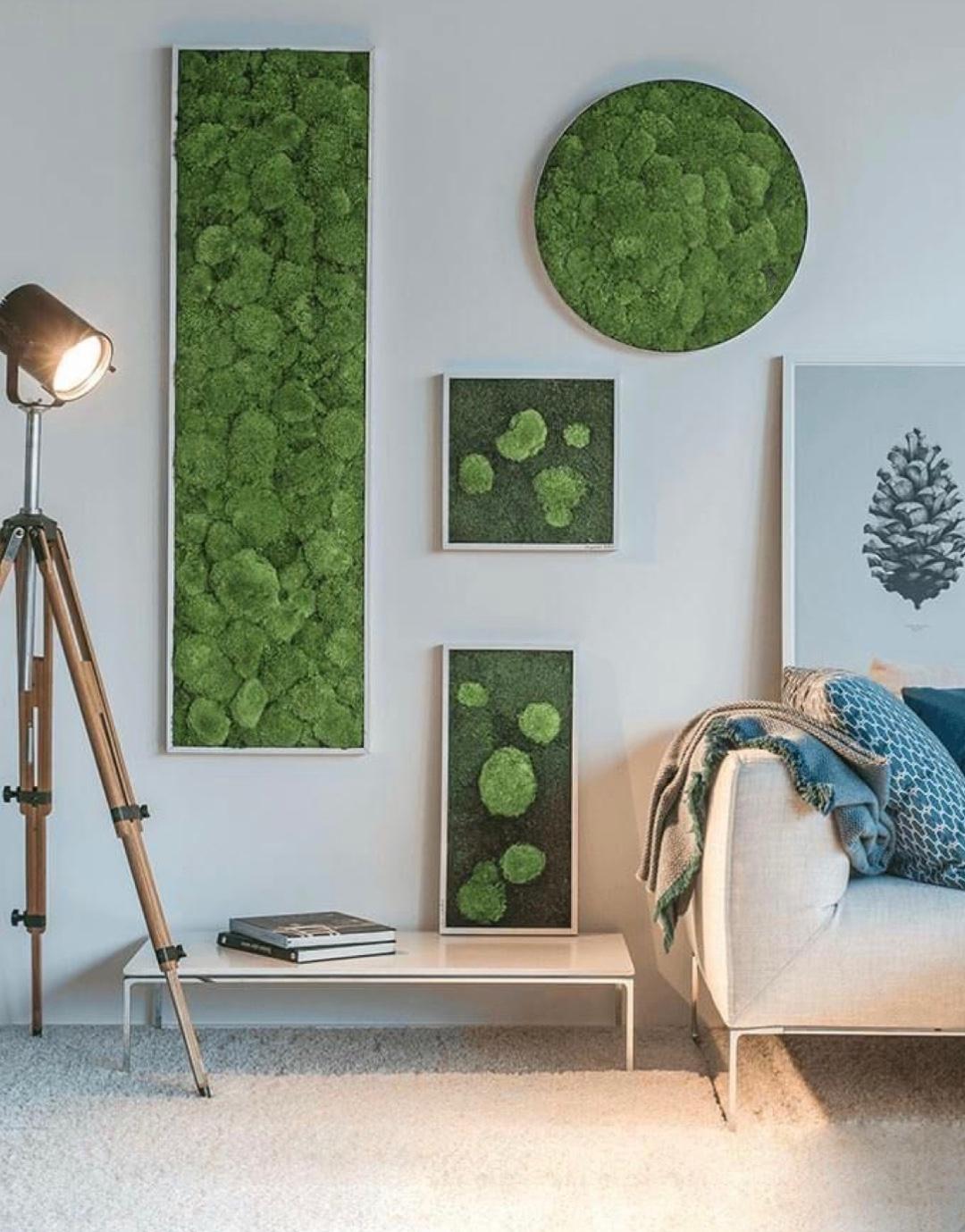 Z lesa rovnou na zeď: DIY mechový obraz vyčarujete za pár minut!