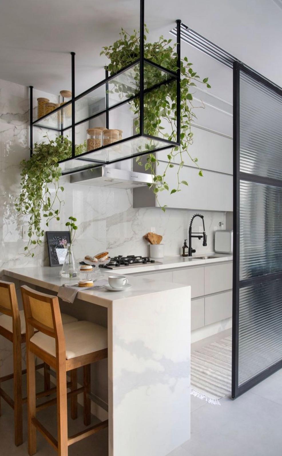 Ve hře nejsou jen bylinky: Kterým květem se bude dařit ve vaší kuchyni?